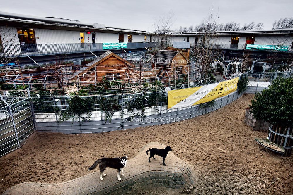 Nederland, amsterdam , 5 december 2013.<br /> dierenasiel aan de Ookmeerweg.<br /> Foto:Jean-Pierre Jans