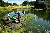 Karen Hayes, foreground, Todd Walker, left, Chris Hardy and Christy Latta work on top of a floating treatment wetland section being constructed for a pond near Hayden Lake. The artificial wetland is being tested by the Kootenai Environmental Alliance for removing and retaining phosphorus and other fresh water nutrients from the pond.