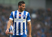 Brighton striker Tomer Hemed during the Sky Bet Championship match between Brighton and Hove Albion and Milton Keynes Dons at the American Express Community Stadium, Brighton and Hove, England on 7 November 2015. Photo by Bennett Dean.