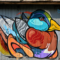 Stylized Duck Mural by Dan Leo in Kilkenny, Ireland<br />