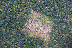 Aerial view of a  clear cut area of the Amazon rain forest, Eastern Lowlands,  Bolivia,South America