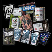 Dogs : Signs and Tattoos