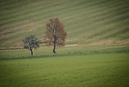 Rural Slovakia in the autumn