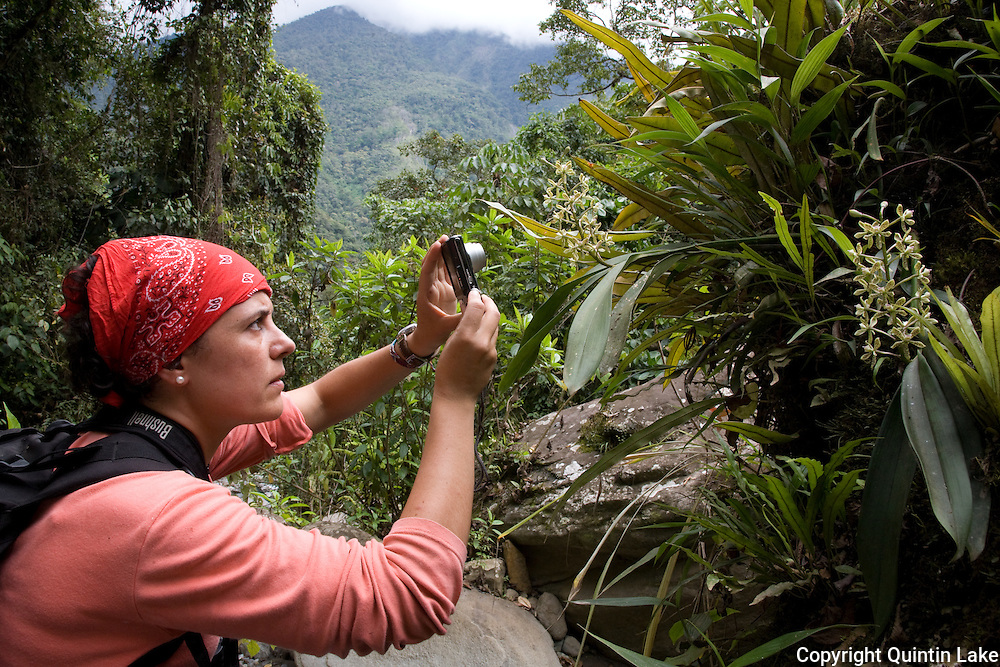 Rosa Maria Roman-Cuesta photographs an orchid she just discovered next to a stream in the cloud Forest above the Interoceanic Highway