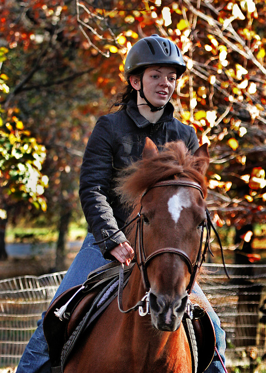 """I think the horse is called """"Dave"""". This is second of a five part mini-series on a warm late fall day in 2006."""