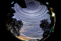 Star Trails looking Up (19:28-02:29). Composite of images  taken with a Nikon D850 camera and 8-15 mm fisheye lens (ISO 800, 10 mm, f/5.6, 30 sec)