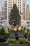 Looking down the Channel Gardens at Rockefeller Center to the Rockefeller Center Christmas Tree with 30 Rockefeller Center in the background.