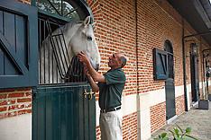 Fokkerij Jan De Cleck - Waasmunster 2014
