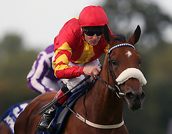Zhukova ridden by Pat Smullen wins The KPMG Enterprise Stakes during day one of the Longines Irish Champions Weekend at Leopardstown Races.