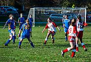 Youth girls high school soccer game, Massachusetts, USA.
