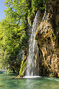 A waterfall splashes down in Plitvice Lakes National Park (Nacionalni park Plitvicka jezera, in Croatia, Europe), which was founded in 1949 and is honored by UNESCO as World Heritage Site. Waters flowing over limestone, dolomite, and chalk in this karstic landscape have, over thousands of years, deposited travertine barriers, creating natural dams, beautiful lakes and waterfalls. Warming conditions after the last Ice Age (less than 12,000 years ago) allowed the natural dams to form from tufa (calcium carbonate) and chalk depositing in layers, bound by plants. Plitvicka Jezera is a municipality of Lika-Senj County, in the Republic of Croatia.