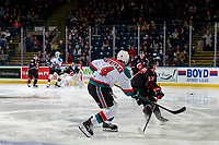 KELOWNA, CANADA - JANUARY 16:  Devin Steffler #4 of the Kelowna Rockets takes a shot against the Moose Jaw Warriors on January 16, 2019 at Prospera Place in Kelowna, British Columbia, Canada.  (Photo by Marissa Baecker/Shoot the Breeze)