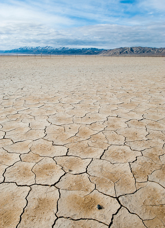 Mud cracks on the playa in Lebou Flat, Dixie Valley, Nevada