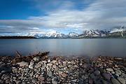 Jackson Lake shoreline in Grand Teton National Park
