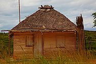 Traditional thatched house in the Macurije area, Pinar del Rio, Cuba.