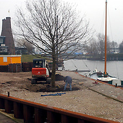 NLD/Huizen/20080221 - Eik geplant naast de in aanbouw zijnde botterwerf in Huizen