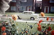 A Ford Anglia is parked in an empty road and homegrown beds of dahlias grow in the front garden of a council house in the early 1960s.