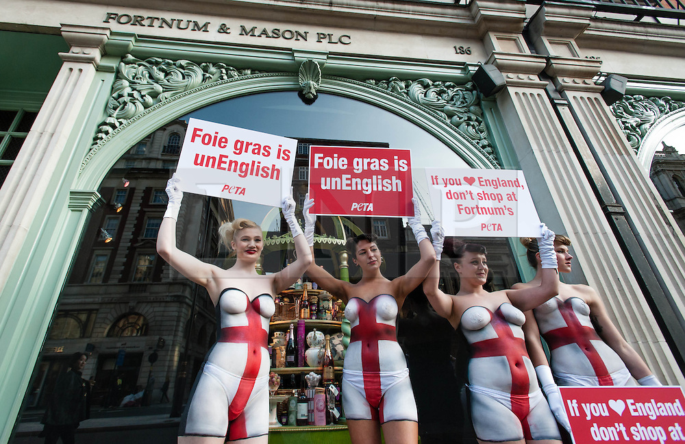 © Licensed to London News Pictures. 23/04/2013. London, UK. Peta campaigners protesting against the sale of foie gras by the shop Fortnum & Mason outside the shop itself on St Georges Day.  The Peta (The People for the Ethical Treatment of Animals) foundation is a UK-based charity dedicated to establishing and protecting the rights of all animals.  Photo credit : Richard Isaac/LNP
