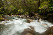 Cleddau River, Fiordland, New Zealand