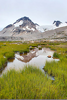 Mount Ethelweard 2819 m (9249 ft) seen from meadows in Athelney Pass, Coast Range British Columbia Canada