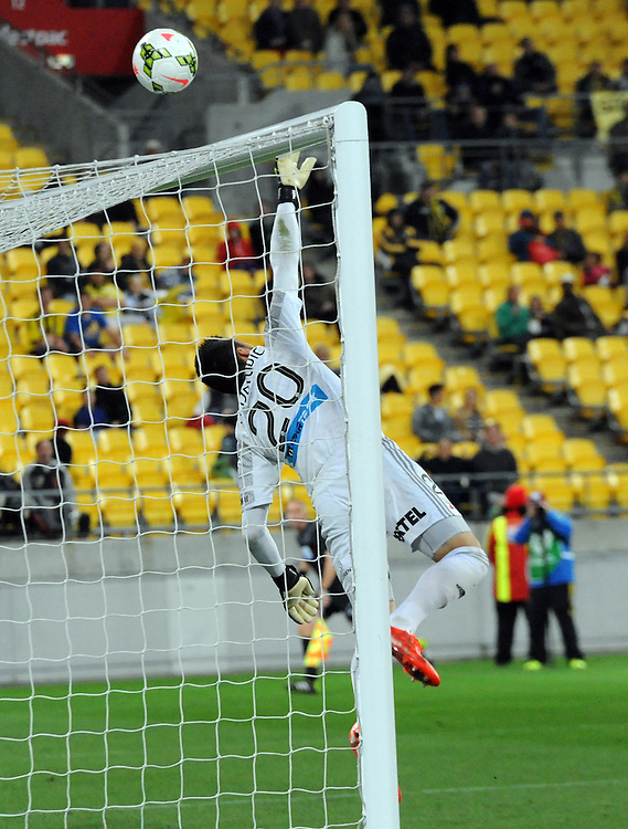 Sydney FC's Vedran Janjetovic makes a save against the Phoenix in the A-League football match at Westpac Stadium, Wellington, New Zealand, Sunday, April 26, 2015. Credit:SNPA / Ross Setford