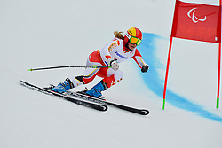 Alexandra Starker, Women's Giant Slalom at the 2014 Sochi Winter Paralympic Games, Russia