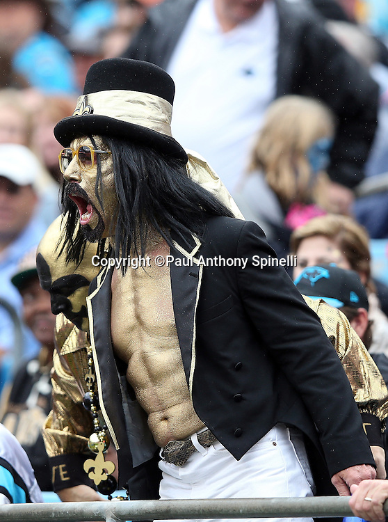 A New Orleans Saints fan with gold paint on his face and body cheers loudly during the 2015 NFL week 3 regular season football game against the Carolina Panthers on Sunday, Sept. 27, 2015 in Charlotte, N.C. The Panthers won the game 27-22. (©Paul Anthony Spinelli)