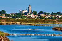 France, Vendée (85), Noirmoutier, Noirmoutier-en-l'Ile, l'église Saint-Philbert, le château et la réserve naturelle du Müllenbourg // France, Vendée, Noirmoutier, Noirmoutier-en-l'Ile