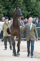 Hoy Andrew, (AUS), Rutherglen<br /> First Horse Inspection - Mitsubishi Motors Badminton Horse Trials <br /> Badminton 2015