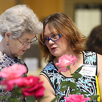 Peggy Bingham, left, of Ashland and Barbara Tambe of Michie Tennessee continue to judge roses Thursday morning at Renasant Bank in Tupelo.