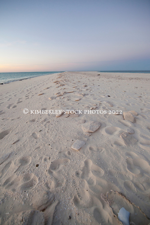 Footsteps on Bedwell Island at the Rowley Shoals.  Approximately 260km west of Broome, only about 250 tourists visit the Rowley Shoals each year.  Bedwell Island is one of only two nesting sites for Red-tailed Tropicbirds, and an important resting site for migratory birds.