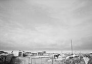 198 / Plastikmeer am Rande Europas: EUROPA, ESP, SPANIEN, ANDALUSIEN, ALMERIA, EL EJIDO, Oktober 2003: Ein  Pferd im Plastikmmer. In der suedspanischen Provinz Almeria werden unter einem riesigen Meer aus Plastik jaehrlich rund 3 Millionen Tonnen Treibhausgemuese fuer den europaeischen Markt produziert. Im Supermarkt findet sich - beinahe unabhaengig von der Jahreszeit - vorgeblich frisches Obst und Gemuese. Die Herkunftslaender dieser Waren variieren: Wer die Produktionskosten immer weiter senken kann, hat die Nase vorn. Die sozialen Folgen dieses Wettlaufs nach unten tragen in der industriellen Landwirtschaft Europas in erster Linie die ArbeitsmigrantInnen, die waehrend der Arbeitsspitzen angestellt werden, um dafuer zu sorgen, dass Europa das ganze Jahr ueber mit Gurken, Tomaten, Paprika und Auberginen versorgt wird. Dieses Produktionsmodell findet seine wohl staerkste und brutalste Auspraegung an der suedwestlichen Grenze Europas. Das Plastikmeer ist selbst vom Mond aus erkennbar - und es breitet sich weiter aus. -Marco del Pra / imagetrust - Stichworte: Stichwort,  agriculture, agrochemie, almeria, Anbau, andalucia, Andalusien, Arbeitsbedingungen, architecture, architektur, Armut, Aubergine, Auberginen, Ausbeutung, black & white, Boden, Boeden, chemie, el ejido, environment, Erosion, Europa, european border, exploitation, gemuese, Gemuesebau, Gewaechshaeuser, Gewaechshaus, gift, greenhouse, Grenze, growhouse, grundwasser, Gurke, Gurken, Illegal, Industrie, industriell, Konzentration, Labirynth, labyrinth, land, landwirtschaft, Maghreb, markt, Meer, Menschenrecht, Menschenrechte, migrant, migrant work, Migranten, migration, Model Release:No, Oeko, Oekologie, Paprika, plantation, plastic, Plastik, Plastikmeer, pollution, Produktion, Produktionskosten, Property Release:No, racism, Rassismus, schwarz, segregation, spain, Spanien, Stichwort, subsahara, Supermarkt, Supermarktketten, Tomate, Treibhaeuser, Treibhaus, umwelt, weiss, wirtschaft