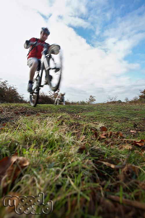 Man performing wheeley on mountain bike in countryside