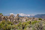 Image from Mono Lake Tufa State Reserve near near Mono Lake, California.