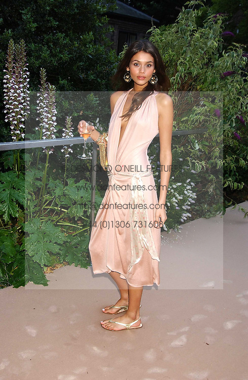 Model JAMIE GUNNS at a summer party hosted by champagne house Krug held at Debbenham House, 8 Addison Road, London on 28th June 2005.<br />