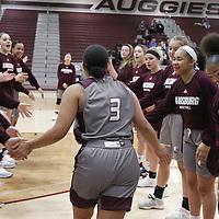 Women's Basketball: Augsburg University Auggies vs. the School in Arden Hills