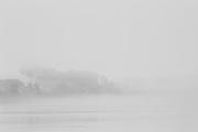 Brazil, rio Madeira, Rondonia.<br /> <br /> Le developpement economique en dent-de-scie est caracteristique de l'Amazonie bresilienne. Apres une forte croissance due a l'exploitation de l'hevea , l'activite s'arrete. <br /> Jusqu'a la fin des annees 60, le Rondonia est a l'image de tous les autres territoires federaux : un immense vide forestier balise de rares communautees plantees au bord des fleuves et sillonne de tribus indiennes semi-nomades, de bandes de seringueiros et de chercheurs d'or ou de diamant. Sa population ne depasse pas 100 000 personnes. Dans les ann&eacute;es 70, le Plan d'Integration Nationale introduit le Rondonia au nombre des zones de colonisation prioritaires. En 1990 le Rondonia compte 1,5 million d'habitants.