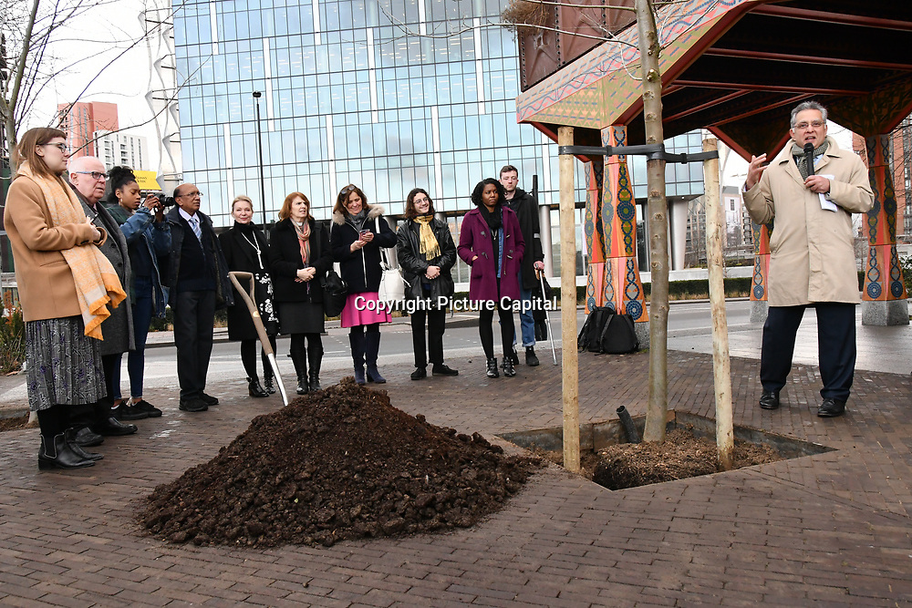 Community of Wandsworth is Planting the 8/9 Elm tree at nine Elms on 25 Feb 2019, London, UK.