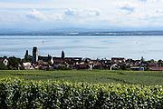Blick auf Weinberge und Hagnau, Wilhelmshöhe, Bodensee, Baden-Württemberg, Deutschland
