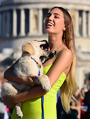 OCT 06 2013 Amber Le Bon at the Canine Catwalk photocall