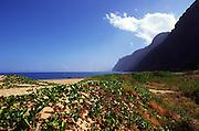 Polihale Beach, Napali Coast, Kauai, Hawaii<br />