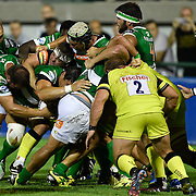 20160819 Rugby : Benetton Treviso vs Leicester Tigers