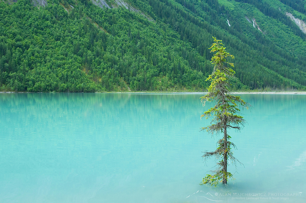 Kinney Lake, Mount Robson Provincial Park British Columbia Canada