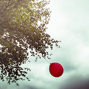 a red balloon hanging on a tree