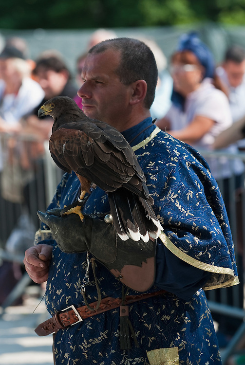 MILAN, ITALY - JUNE 05:  A falconer wearing a medieval costume holds a desert buzzard during the 1st Palio Citta' di Milano  on June 5, 2010 in Milan, Italy. The Palio Citta di Milano is a re-enactment of a medieval tournament in which only women partake as commemoration of the courage displayed by local women during the Vigevano siege of 1449.  (Photo by Marco Secchi/Getty Images)