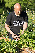 Democratic presidential hopeful Senator Cory Booker helps harvest fresh spinach during a visit to Fresh Future Farm April 27, 2019 in North Charleston, South Carolina. Booker spent his 50th birthday helping out at the urban farm as part of his Justice For All tour.
