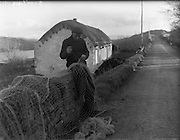 26-29/01/1960<br /> 01/26-29/1960<br /> 26-29 January 1960<br /> Gael-Linn Special at Gweedore and Teelin Co. Donegal. Image shows a fisherman mending nets by a cottage. Image shows fishermen mending nets by a cottage.