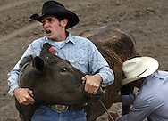 Tyler Nielsen holds down a cow as his uncle Ryan Nielsen milks it during the Wild Cow Milking competition at the Rowell Ranch Rodeo in Castro Valley..Event on 5/20/06 in Castro Valley...JAKUB MOSUR / The Chronicle
