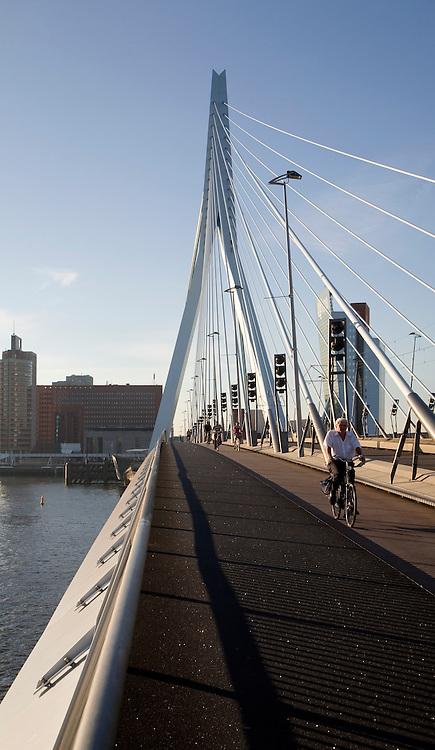 Erasmus Bridge, Erasmusbrug, spanning the River Maas designed by architect Ben van Berkel completed 1996, 800 metre span linking north and south Rotterdam, Netherlands,