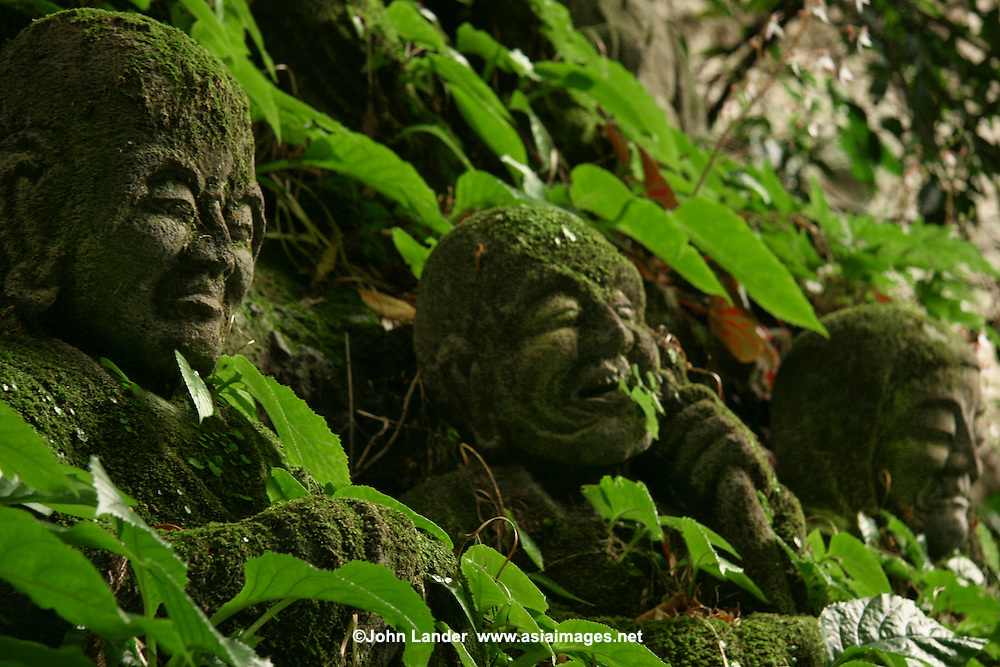 "Monju Temple Boddhisatvas - Moss Covered Jizos - ""Jizo"" images and statues are popular in Japan as Bodhisattva who console beings awaiting rebirth and travelers. As such they are often found along roadsides, paths or even street corners."